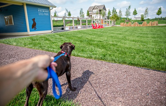 Amenities-DogPark.jpg